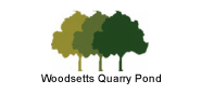 woodsetts-quarry-pond